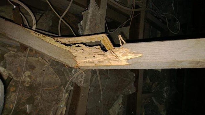 Termite damage causing structural roof timber to collapse under its own weight