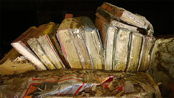 Termite damaged books